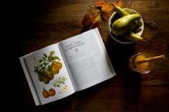 Mulled Perry with Pears & Spices